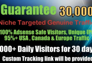 I Will Provide 30k Niche Targeted SEO Friendly Website Traffic