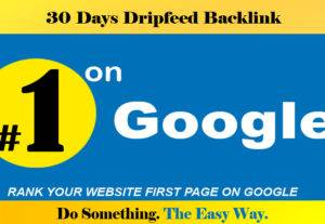 Rank your website first page on google, Monthly Drip feed SEO Link-building