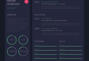 I Will Design A Killer Infographic Resume Unique CV Design