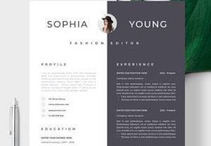 I Will Create A Well Designed CV Services By Best Graphic Designer